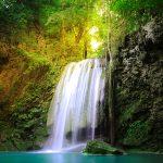 奄美大島 山の神